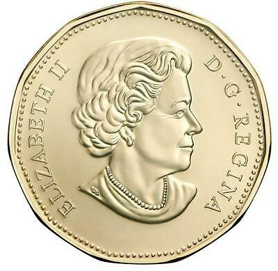 2019 CANADA 🍁 EQUALITY 1 Dollar Coin - LOONIE; BU from roll;🍁 Limited Release 2