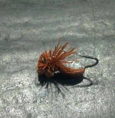 12 HI VIZ CINNAMON BEETLE ANT SZ 14 DUSTY DEVIANT BROOKSIDE Flies FLY Fishing