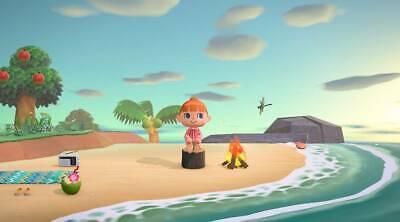 Animal Crossing: New Horizons - Nintendo Switch 2