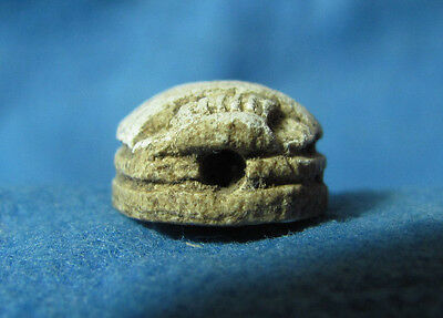 Egypt / Canaanite Scarab Seal Supposedly Late Bronze Age c. 1550-1150BC. 6