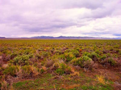 """40 Acre Nevada Ranch """"King's River Valley"""" Only $295 Down Financed @ 0% Interest 2"""