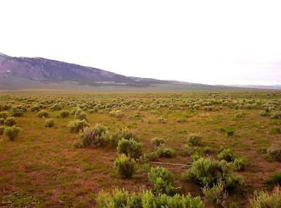 """40 Acre Nevada Ranch """"King's River Valley"""" Only $295 Down Financed @ 0% Interest 8"""