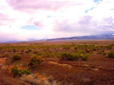 """40 Acre Nevada Ranch """"King's River Valley"""" Only $295 Down Financed @ 0% Interest 3"""