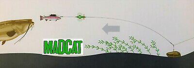 DAM Madcat Screaming Profi River Rig Worm /& Squid 180cm S 20g Hakengröße 6//0+6//0