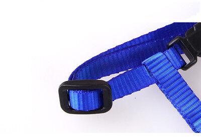 Cat Kitten Puppy Soft Nylon Adjustable Harness Leash with Clip Pet Walking Lead 9
