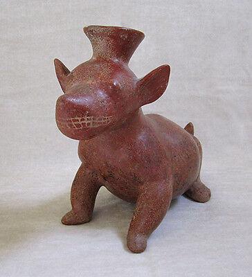 LARGE Pre-Columbian COLIMA TERRACOTTA SEATED DOG VESSEL, circa 300 B.C. 3