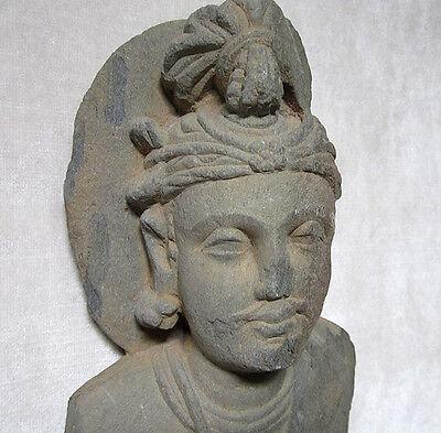 ANCIENT GANDHARAN SCHIST STONE SCULPTURE BUST OF BODHISATTVA, circa 200 AD 7