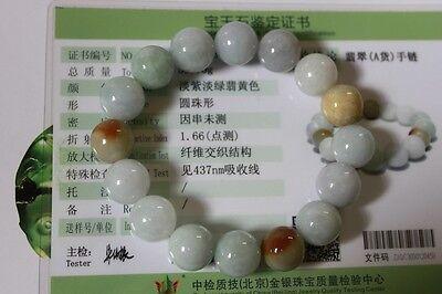 Certified Natural Jade Grade A Light Green Yellow Jadeite Bracelet 13mm #Br175 9