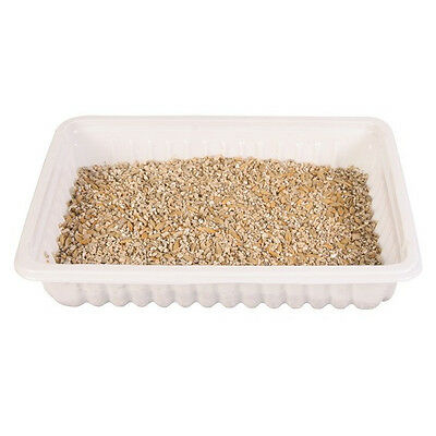 Trixie, Grow your Own Cat Grass, 100% Natural including tray