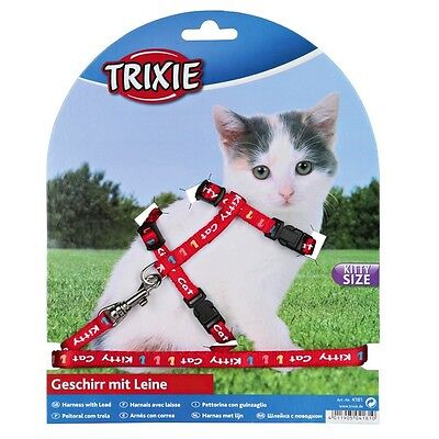Kitten harness and lead, various colours. snap buckles, kitty cat motif(4181) 3