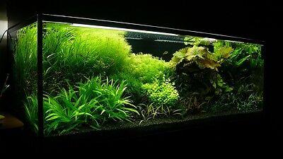 30 KG NATURAL BLACK AQUARIUM SUBSTRATE(SAND - GRAVEL 1-3mm) IDEAL FOR PLANTS 2