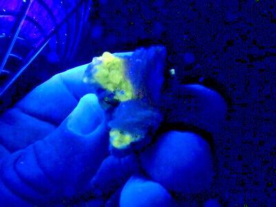 """Minerales """" Bonitos Cristales De Barita+Cerusita+Galena De Marruecos  -  2B18 """" 4"""