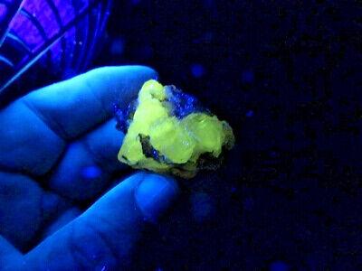 """Minerales """" Bonito Cristal De Cerusita De Touissit (Marruecos)  - 11A13 """". 6"""