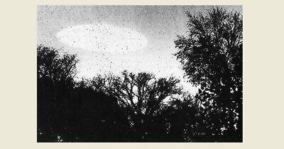 1960 UFO Flying Saucer PHOTO Minneapolis Minnesota, Space Aliens DAYLIGHT DISC 2