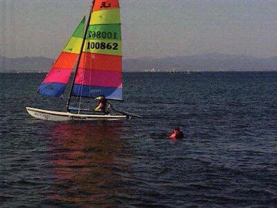 DVD Catamaran de sport : Découverte & initiation  - Voile bateau - Sport Loisirs 11