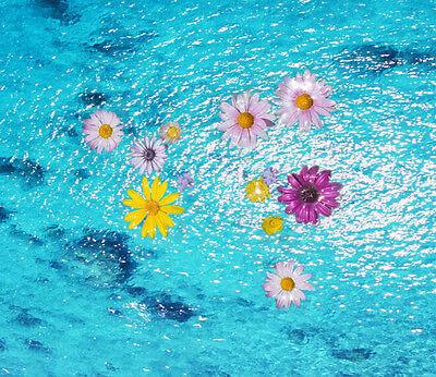 3d Clear Water Flower Floor Wallpaper Murals Wall Print