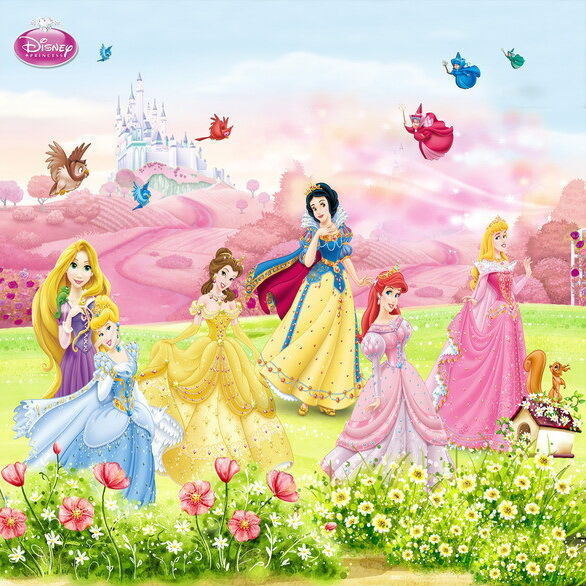 DISNEY 5 PRINCESS Castle Snow White Wallpaper Wall Decals Wall Art ...