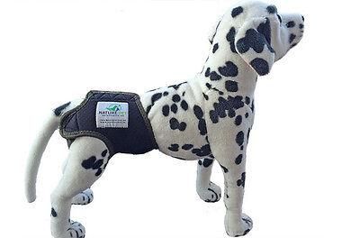 Läufigkeitshose für Hündinnen / Inkontinenzhose für Hunde / Hundeschutzhose