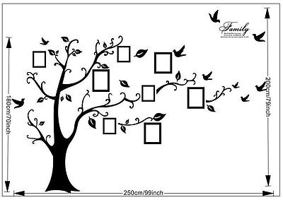 Family Tree Wall Decal Sticker Large Vinyl Photo Picture Frame Removable Black 5