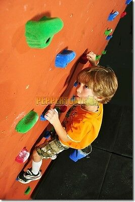 Climbing Rock Holds Set of 5 Small Medium Large Cubbyhouse Fort Playground Wall