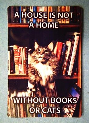 Funny Cat Meme Refrigerator Magnet (2 x 3) Home Books Bookcase Collectible 2