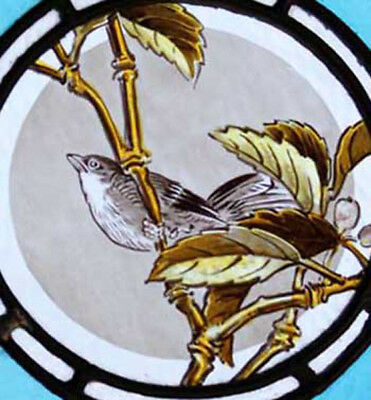 Beautifully Painted Bird Antique English Victorian Stained Glass Window