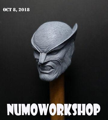 """Hush 1//6 Scale CUSTOM UNPAINT HEAD for 12/"""" Body Figure by NUMO"""