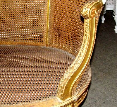 19th Century French Louis XVI Cane Caned Settee Sofa Canapé 6