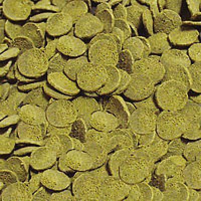 Sera Wels Chips 1000 ml - Chips für raspelnde Ancistrus und L-Welse