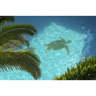 SEA TURTLE CERAMIC Swimming Pool Mosaic - $102.92 | PicClick
