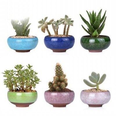 Lovely Mini Ice-Crack Glaze Flower Ceramics Succulent Plant Pot Flowerpot Decor 3