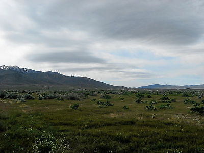 10 Acre Nevada Ranch Lake Views~Power~Cabin-2Wd! Financed $395 Down~0% Interest 6