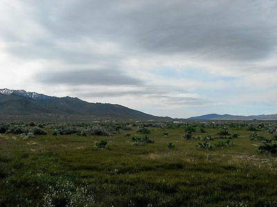 Rare 1.5 Acre Nevada Lot Near Reno! Lake & Free Cabin! Perfect Road! No Reserve 6