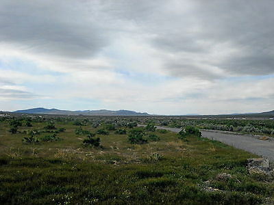 Rare 1.5 Acre Nevada Lot Near Reno! Lake & Free Cabin! Perfect Road! No Reserve 8