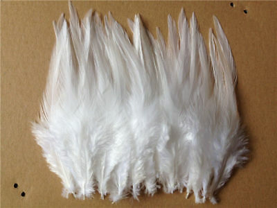 Beautiful 50pcs/100pcs rooster tail feathers 10-15cm / 4-6inch 30 Colors 3