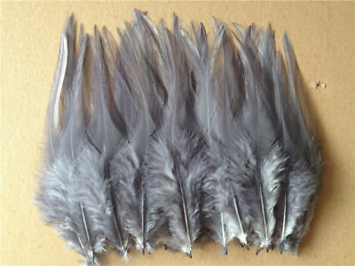 Beautiful 50pcs/100pcs rooster tail feathers 10-15cm / 4-6inch 30 Colors 11
