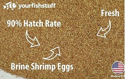 WILD ARTEMIA EGGS / Brine shrimp EGGS from Great Salt Lake.100% Natural /AWSDEAL 5