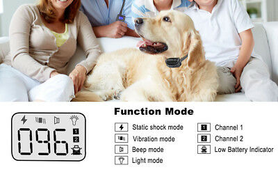 Petrainer Waterproof Rechargeable Dog Training Shock Collar With Remote 2 Dogs 6