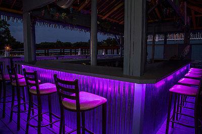 Under Bottle Lighting Club Bar Drink Led