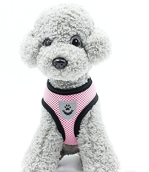 Pet Puppy Harness Breathable Mesh Safety Vest Chest Strap For Small Dogs Puppies 4