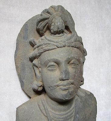 ANCIENT GANDHARAN SCHIST STONE SCULPTURE BUST OF BODHISATTVA, circa 200 AD 5