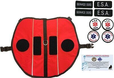 ALL ACCESS CANINE™ Service Dog Emotional Support Animal ESA Vest Harness Bundle 2