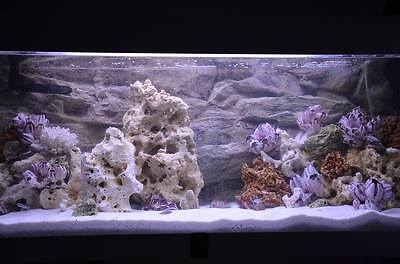 20 Kg Mixed Set Of Stones For Malawi Cichlid Tanganyika Aquarium Ocean Rock 4