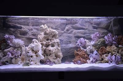 25 Kg Mixed Set Of Stones For Malawi Cichlid Tanganyika Aquarium Ocean Rock 5