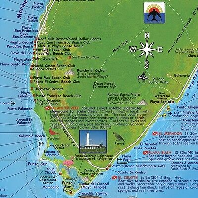 Cozumel Mexico Map Poster By Franko Maps Dive Snorkel Adventure