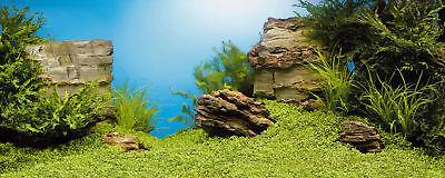 Juwel Aquarium Double Poster 1 - Small, Large & Extra Large Fish Tank Background