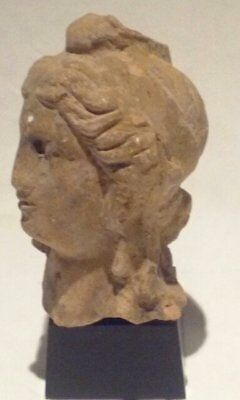 Ancient Terracotta head of Apollo or Alexander the Great 3