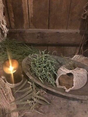 Primitive Dried Gourd Early Look Peg Hanger Homestead Door Keep Corn Cobs #2