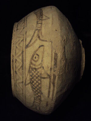 Ancient Huge Size Teracotta Painted Pot with Fishes Indus Valley 2500 BC  #SG617 4
