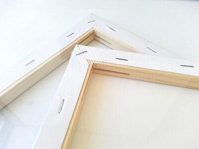 5 x Artist Blank Canvas Assorted Size Large Range Wholesale Bulk Art Supplies 12